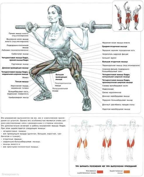 Как накачать все мышцы в домашних условиях для девушки